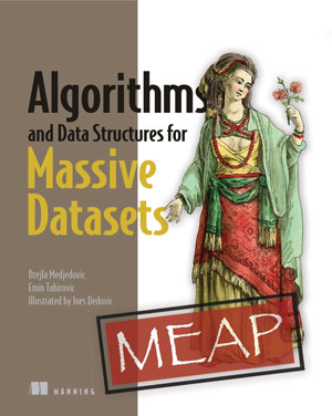 Algorithms and Data Structures for Massive Datasets, MEAP Edition, Version 3